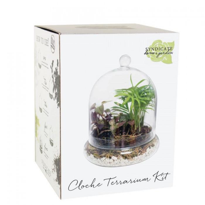 Accessoires-cloche pour terrarium (grande)