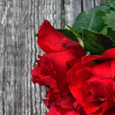 Bouquet des rencontres