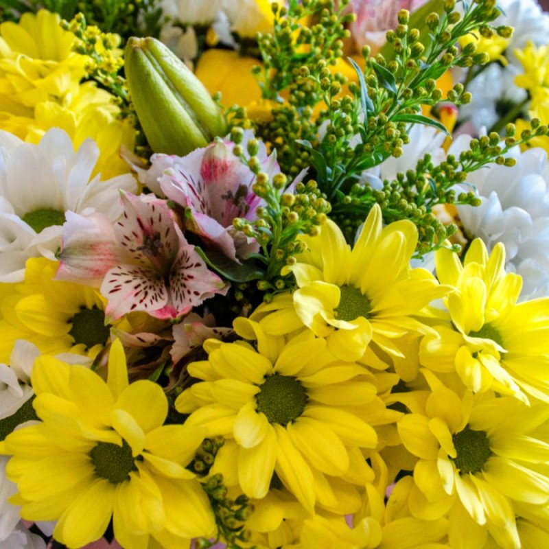 Bouquet des marguerites