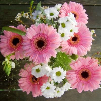 Bouquet des simples harmonies